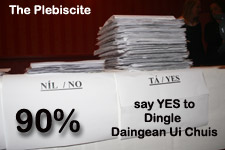 Dingle Daingean Ui Chius Plebiscite